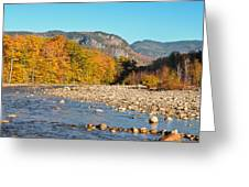 Sunlight On The Saco Greeting Card by Geoffrey Bolte