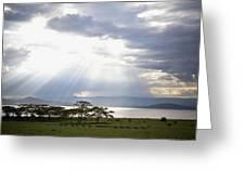 Sunlight Shines Down Through The Clouds Greeting Card by David DuChemin