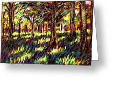 Sunlight Through The Trees Greeting Card by John  Nolan
