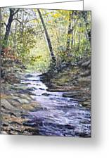 Sunlit Stream Greeting Card by Penny Neimiller