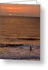 Sunrise At Jacksonville Greeting Card by Joe Bonita