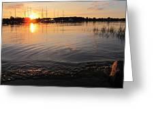 Sunrise Greeting Card by Valia Bradshaw