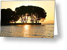 Sunset At Buckingham Point Greeting Card by Cheryl Young