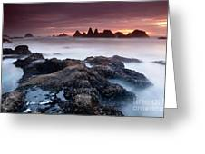 Sunset At Seal Rock Greeting Card by Keith Kapple