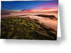 Sunset At Swamis Beach Greeting Card by Larry Marshall