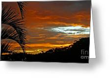 Sunset Behind The Palms Greeting Card by Kaye Menner