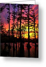 Sunset On Horseshoe Lake 1 Greeting Card by Marty Koch