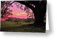 Sunset On The Bench Greeting Card by Michael Thomas