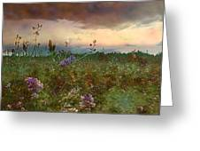 Sunset Over Meadow Greeting Card by Shirley Sirois