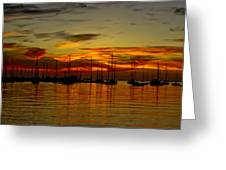Sunset Over The Harbour Greeting Card by Nelieta Mishchenko