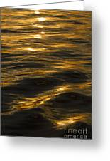 Sunset Reflections Greeting Card by Dustin K Ryan