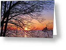 Sunset Silhouette 1 Greeting Card by Peter Chilelli