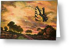 Sunshine Traveler-swallowtail Greeting Card by Michael Frank