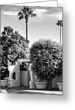 Suntan Lane Palm Springs Greeting Card by William Dey