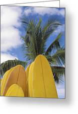 Surfboard Concession Greeting Card by Bob Abraham - Printscapes