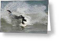Surfing 396 Greeting Card by Joyce StJames