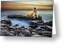 Surreal lioness Greeting Card by Carlos Caetano