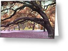 Surreal Old Oak Tree South Carolina Fall Colors Greeting Card by Kathy Fornal