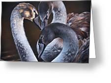 Swan Whispers Greeting Card by Elena Kolotusha