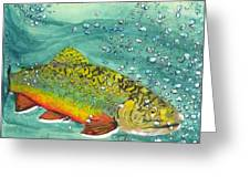 Swimming Upstream Greeting Card by Sheryl Brandes