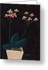 Table Orchid Greeting Card by M Valeriano