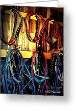 Tack Room Greeting Card by Christine Zipps