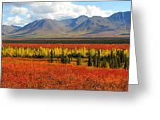 Talkeetna Mountains Moment Greeting Card by Alan Lenk