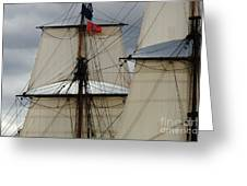 Tall Ships Greeting Card by Bob Christopher
