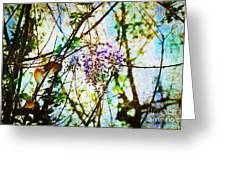 Tangled Wisteria Greeting Card by Andee Design