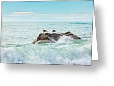 Tasman Sea Greeting Card by MotHaiBaPhoto Prints