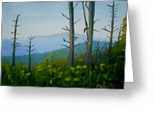 Tennessee Mts. Greeting Card by Phebe Smith