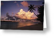 Tetiaroa Greeting Card by Larry Dale Gordon - Printscapes