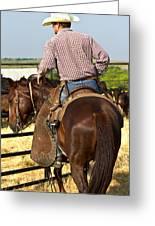 Texan Cowboy Greeting Card by Elizabeth Hart