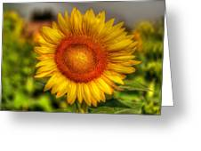 Thai Sunflower Greeting Card by Adrian Evans