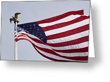 The American Flag Greeting Card by Tim Laman