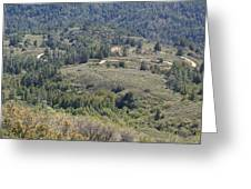 The Double Bow Knot On Mount Tamalpais Greeting Card by Ben Upham