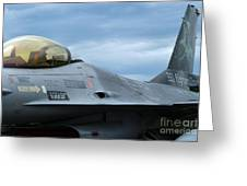 The F-16 Aircraft Of The Belgian Army Greeting Card by Luc De Jaeger