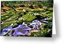 The Fairy Brook Greeting Card by Kim Shatwell-Irishphotographer
