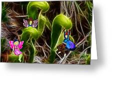The Fairy's Playground Greeting Card by Methune Hively