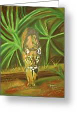 The Florida Panther Greeting Card by John Keaton