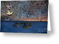 The Garden Pond Greeting Card by Steven Gray