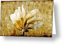 The Golden Magnolia Greeting Card by Andee Design