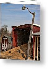 The Grain Barn Greeting Card by Paul Ward