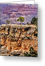 The Grand Canyon Iv Greeting Card by Tom Prendergast