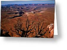 The Green River Over Look Canyonland National Park Greeting Card by Daniel Chui