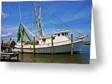 The Harbor Greeting Card by Betsy A  Cutler