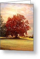 The Healing Tree  Greeting Card by Jai Johnson
