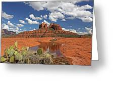 The High Desert Drinks Greeting Card by Gary Kaylor