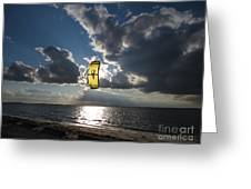 The Kite Greeting Card by Rrrose Pix