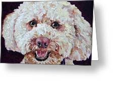 The Labradoodle Greeting Card by Enzie Shahmiri